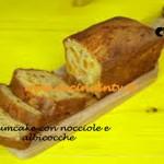 Plumcake con nocciole e albicocche ricetta Junk Good su Real Time