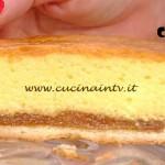 La Prova del Cuoco - Torta morbida all'albicocca ricetta Ragona