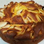 Cotto e mangiato - Torta di mele e limone ricetta Tessa Gelisio